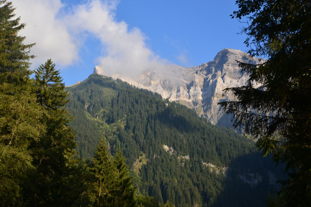 A view to the massif of Dents du Midi from Grand-Paradis
