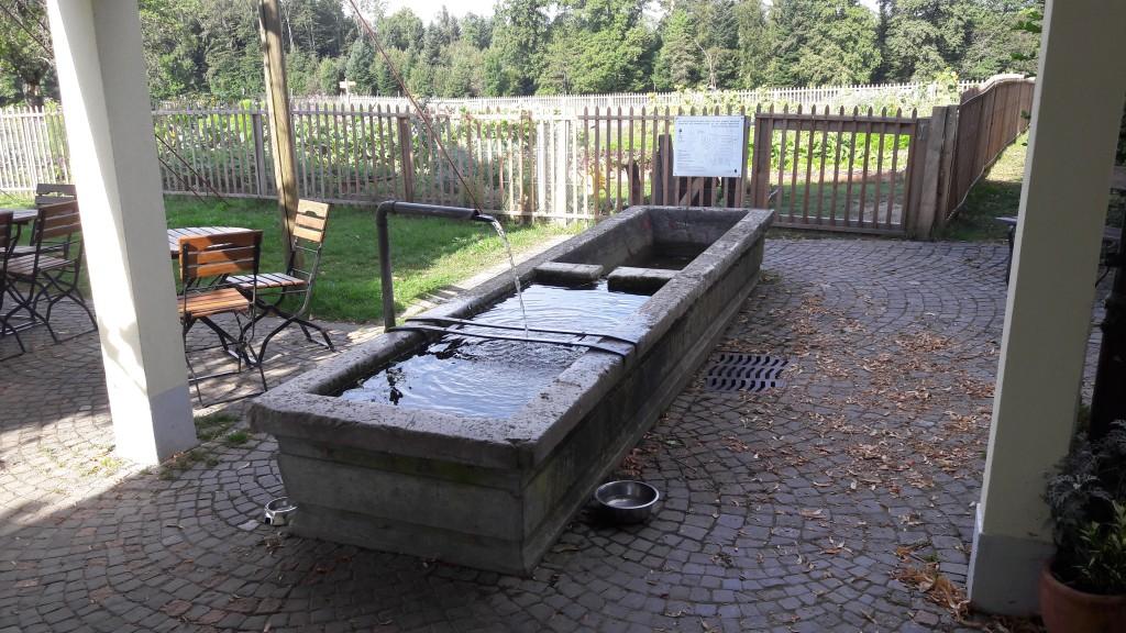 Fontaine du Chalet des Enfants